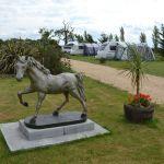 Horse Statue At Caravan Park