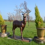 Deer Statue Close Up